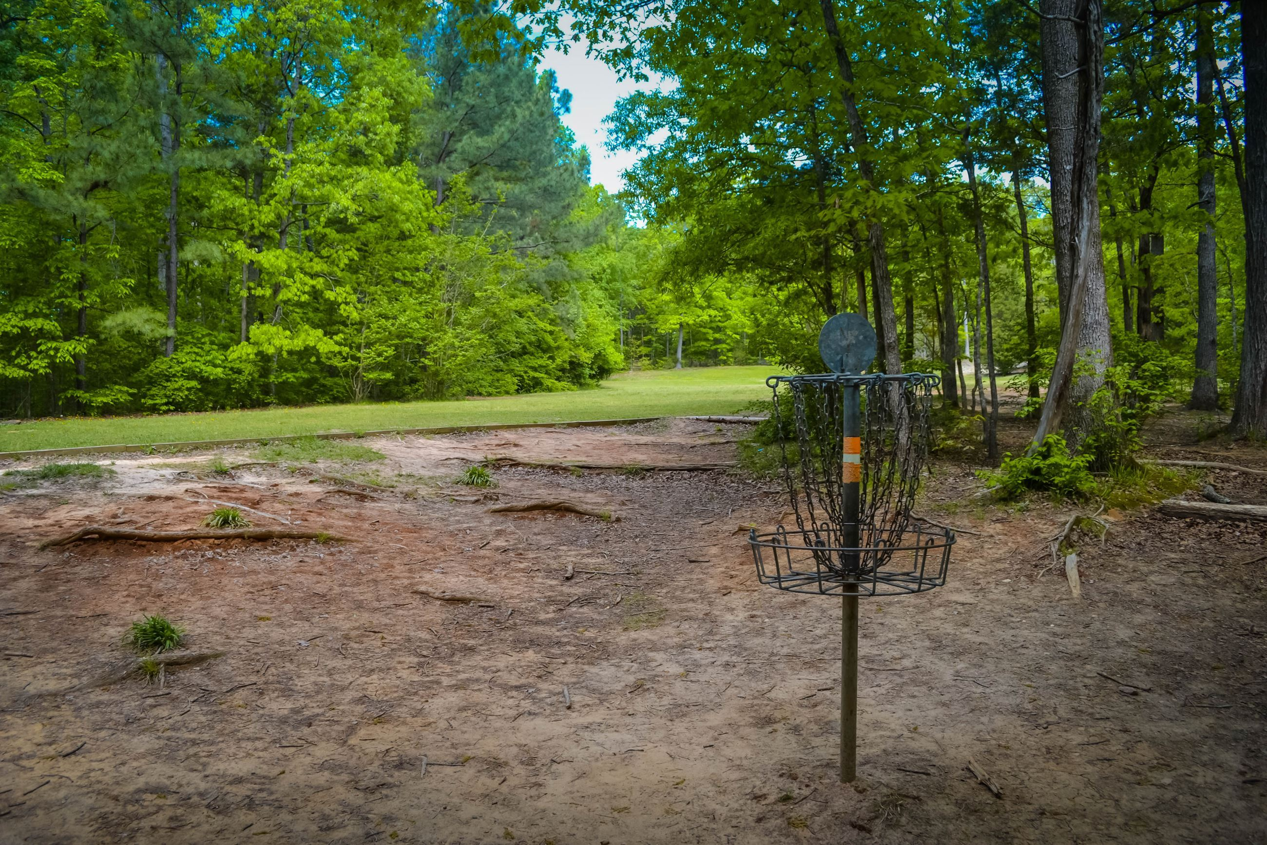 Cornwallis Road Park Disc Golf