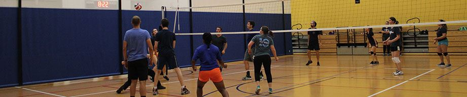 Co-Rec indoor volleyball game
